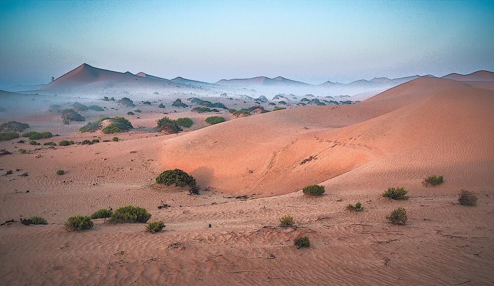 Early morning mist - Al Khazna, Abu Dhabi, UAE